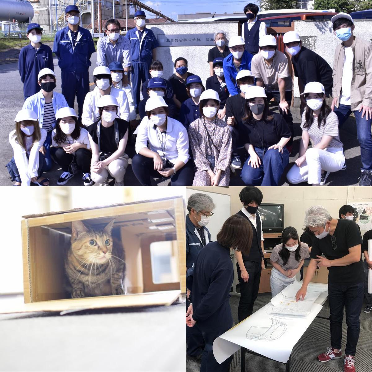 瓦猫プロジェクトの様子